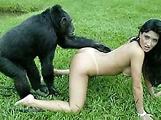 outdoors sex with a monkey