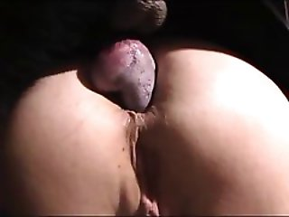 Young girl loves anal sex with dog