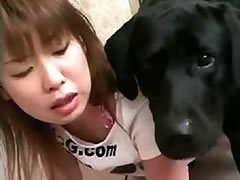 Japanese geisha loves sex with dog